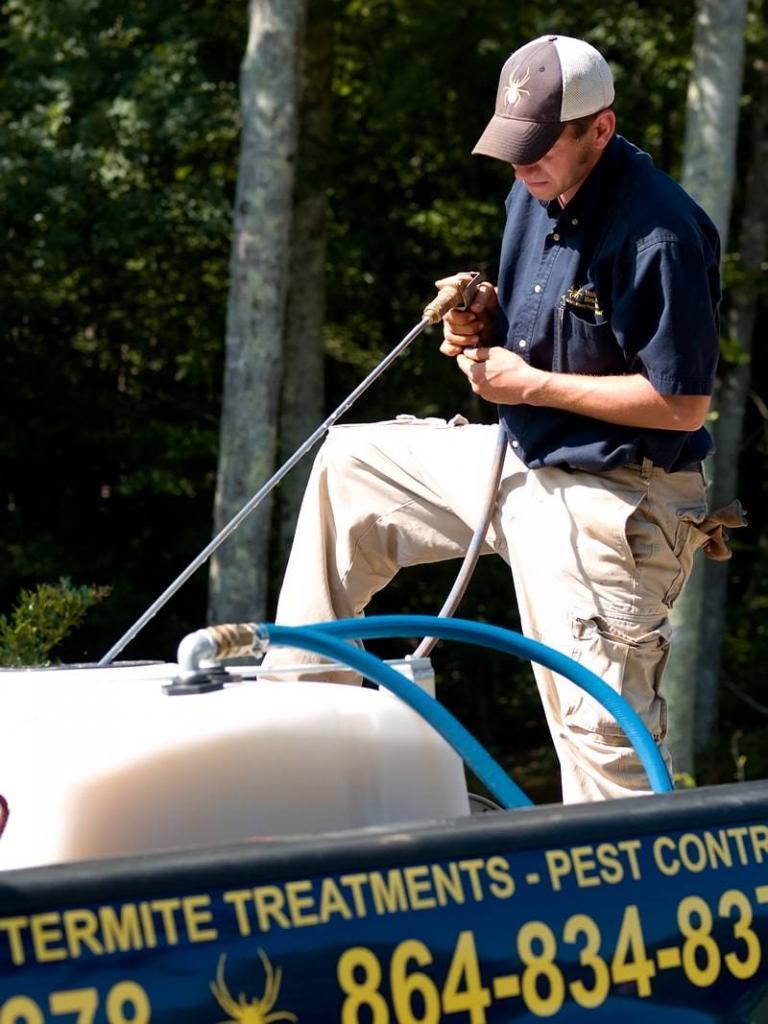 Termite Control in Winter