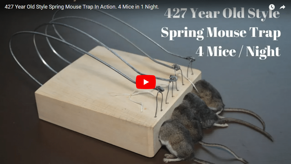 Youtuber Shawn Woods creates highly successful video series about antique mouse traps