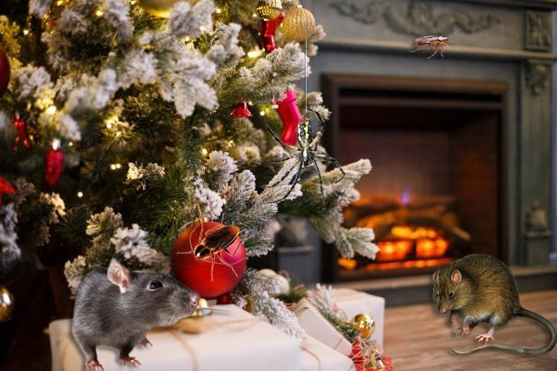 Tis The Season For Holiday Pests